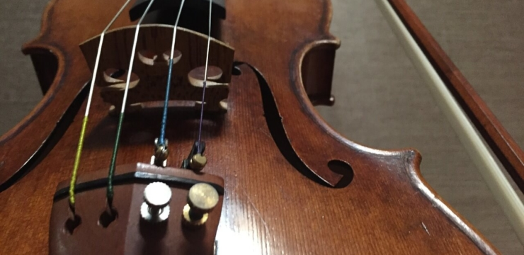 Best Violin Pegs for 2016
