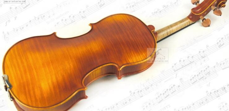 Best D Z Strad Violin Reviews 2017