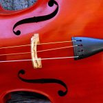 Violin Mutes: A-Z Buyer's Guide for Beginners