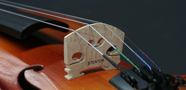 Stentor Student II Violin Review