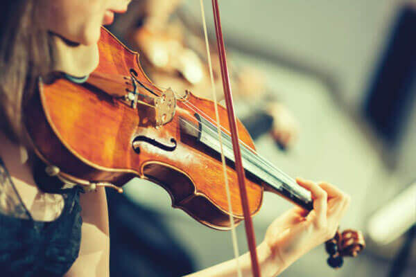 best beginner violin for students - guide