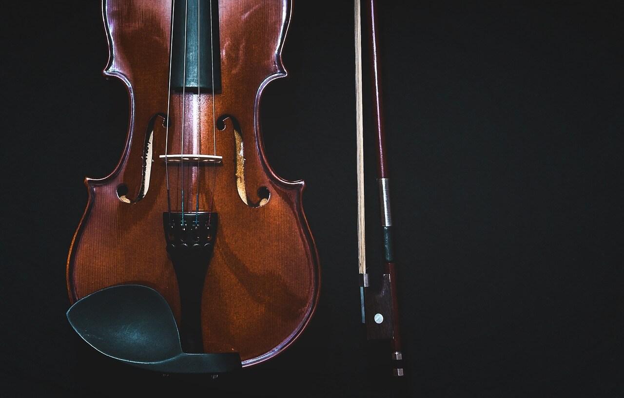 bowed-instrument