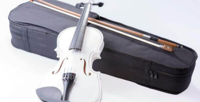 best violin case buying guide